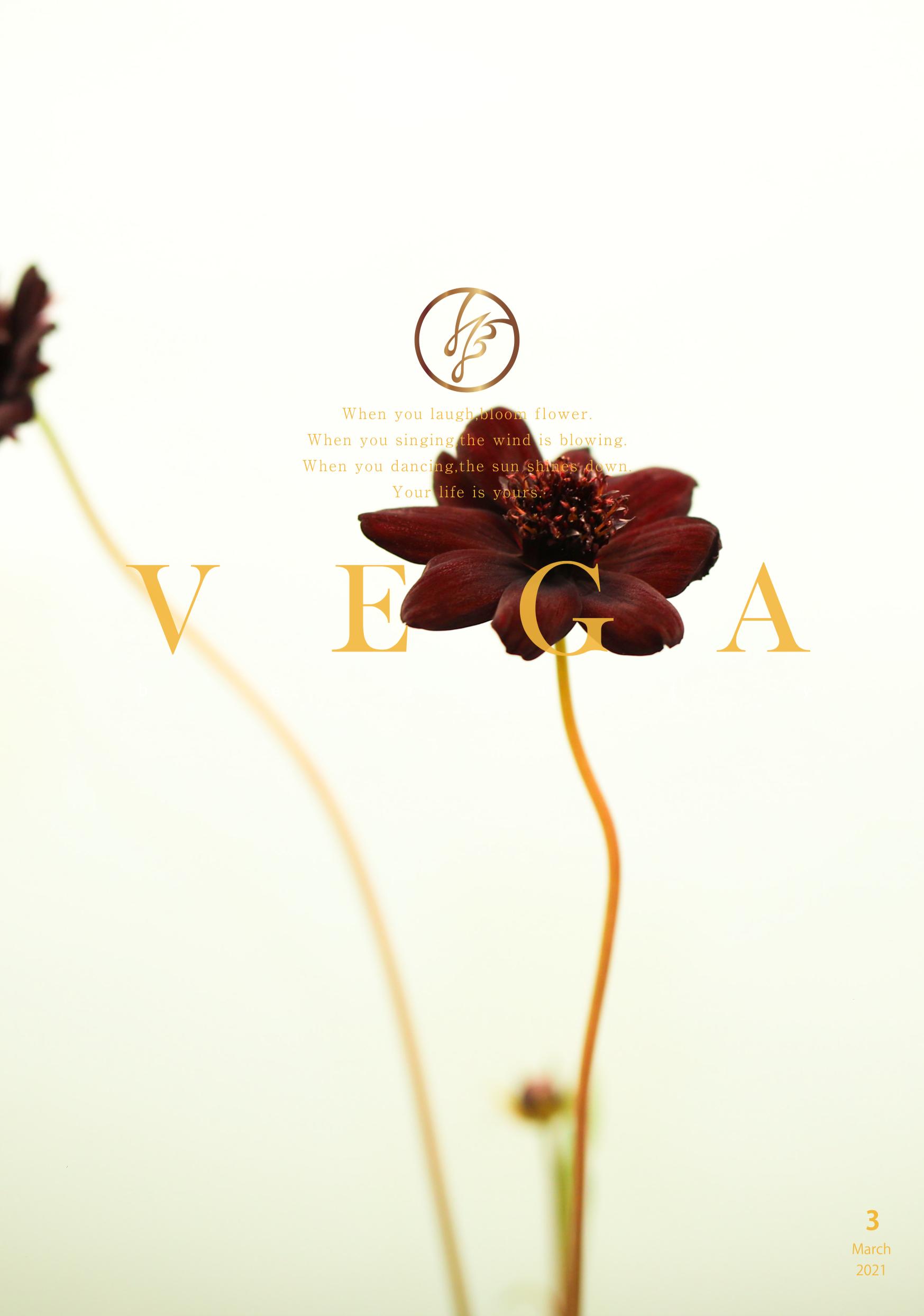 VEGA Beauty 3月号